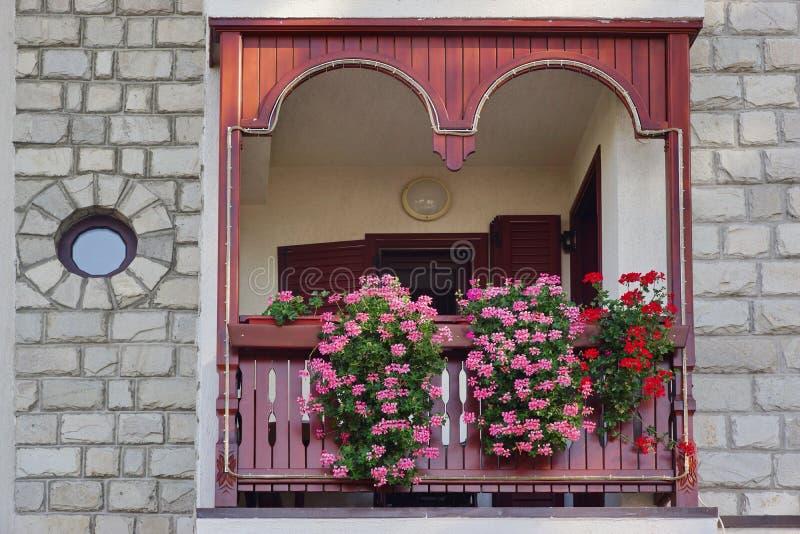 Διακοσμητικός κήπος εγχώριων μπαλκονιών με την πετούνια στο καλάθι στοκ φωτογραφία