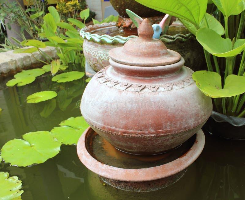 Διακοσμητικός κήπος με τα δοχεία τερακότας στοκ εικόνες με δικαίωμα ελεύθερης χρήσης