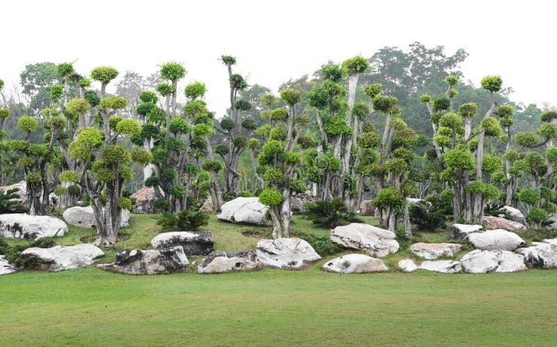 Διακοσμητικός κήπος στοκ φωτογραφία