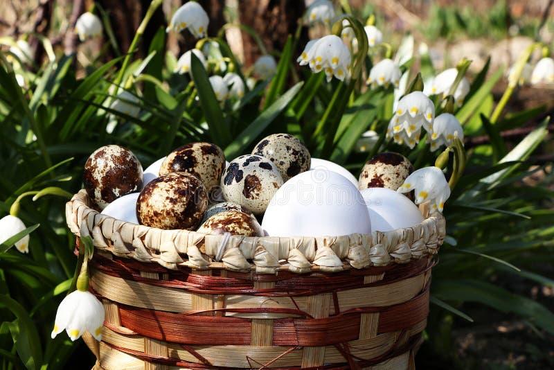 Διακοσμητικό καλάθι με τα ζωηρόχρωμα αυγά Πάσχας στη χλόη στο υπόβαθρ στοκ φωτογραφίες με δικαίωμα ελεύθερης χρήσης