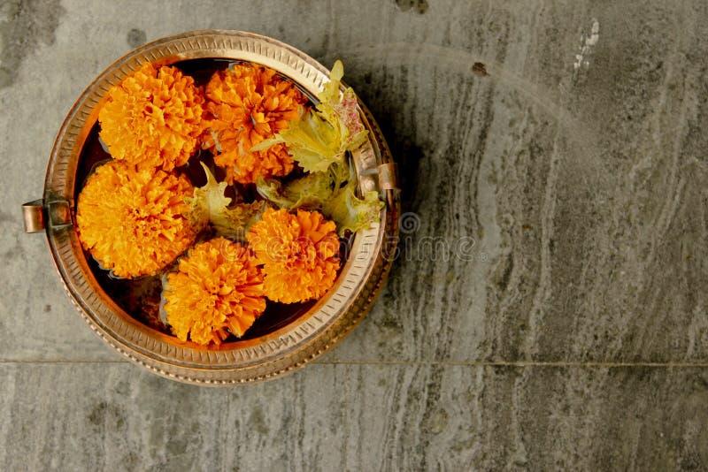 Διακοσμητικό λουλούδι πέντε στοκ εικόνες με δικαίωμα ελεύθερης χρήσης