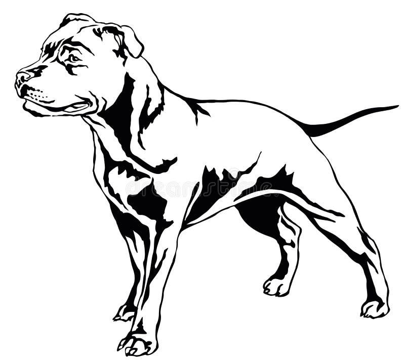 Διακοσμητικό μόνιμο πορτρέτο του τεριέ β Staffordshire Bull σκυλιών διανυσματική απεικόνιση