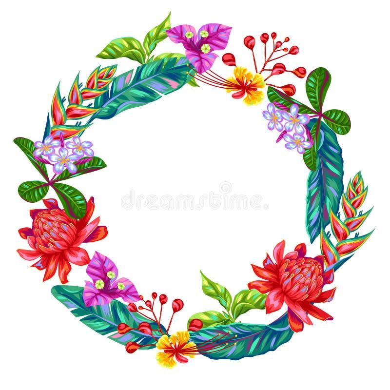 Διακοσμητικό πλαίσιο με τα λουλούδια της Ταϊλάνδης Τροπικοί πολύχρωμοι φυτά, φύλλα και οφθαλμοί ελεύθερη απεικόνιση δικαιώματος