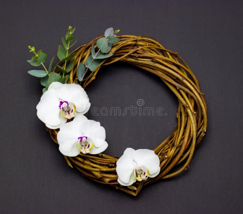 Διακοσμητικό στρογγυλό στεφάνι με τα λουλούδια ορχιδεών και ευκάλυπτος σε ένα σκοτεινό υπόβαθρο στοκ φωτογραφία με δικαίωμα ελεύθερης χρήσης