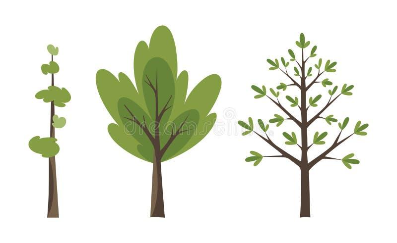 Διακοσμητικό σύνολο εικονιδίων δέντρων Επίπεδα δέντρα σε ένα επίπεδο σχέδιο Απομονωμένος στο λευκό τα εύκολα εικονίδια ανασκόπηση ελεύθερη απεικόνιση δικαιώματος