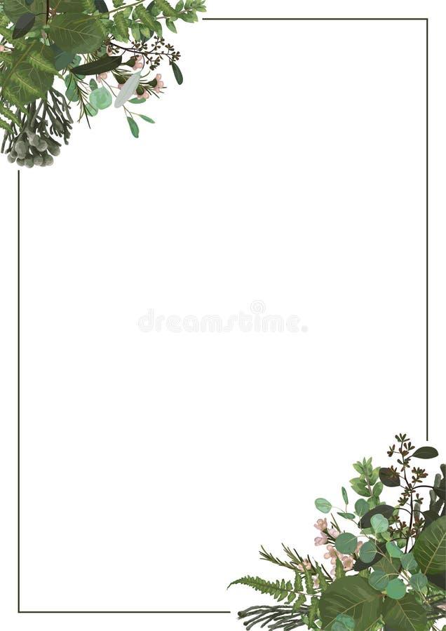 Διακοσμητικό χρυσό ορθογώνιο πλαίσιο τους κλάδους ευκαλύπτων, φτερών και πυξαριού που απομονώνονται με στο λευκό Για τις γαμήλιες διανυσματική απεικόνιση