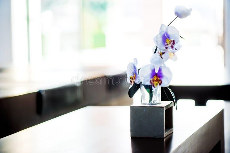 Διακοσμητικό orchid λουλούδι στοκ εικόνες