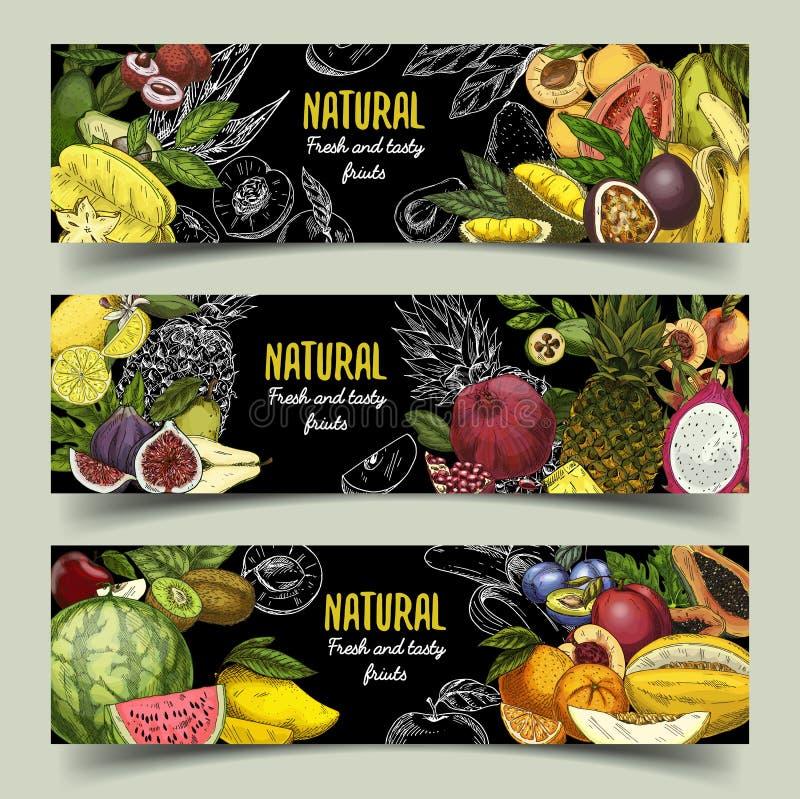 Διακριτικά ή εμβλήματα με τα εξωτικά φρούτα διανυσματική απεικόνιση