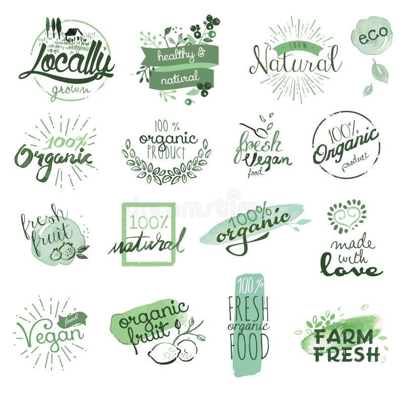 Διακριτικά και στοιχεία οργανικής τροφής διανυσματική απεικόνιση