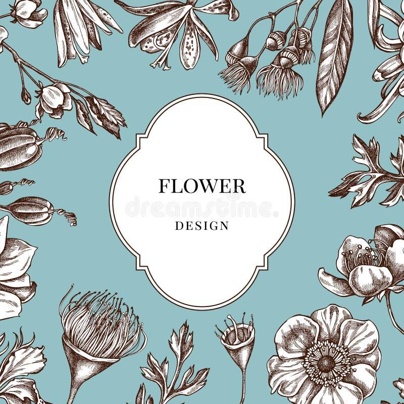 Διακριτικό πέρα από το σχέδιο με το ιαπωνικό χρυσάνθεμο, κρίνος βατόμουρων, λουλούδι ευκαλύπτων, anemone, japonica ίριδων, sakura ελεύθερη απεικόνιση δικαιώματος