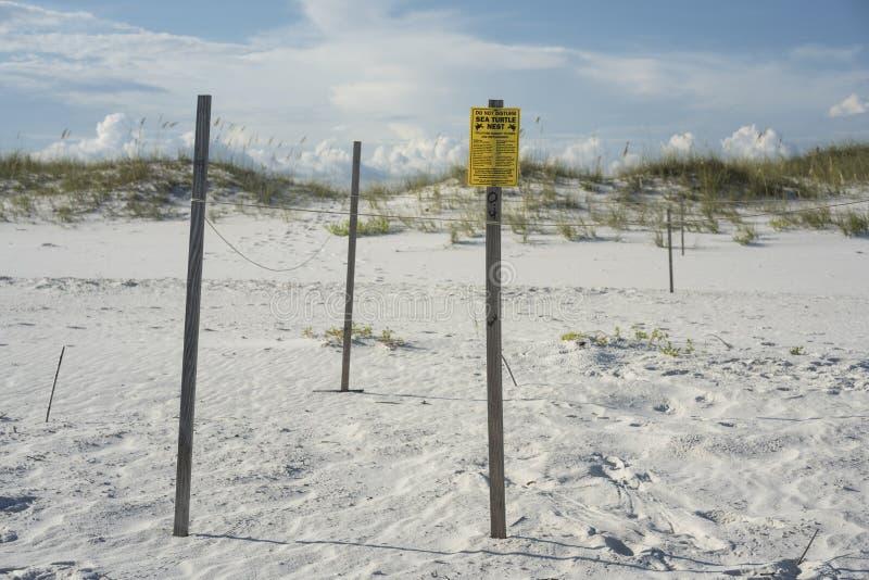 Διακυβευμένη προστασία φωλιών χελωνών θάλασσας στην παραλία της Φλώριδας στοκ φωτογραφία με δικαίωμα ελεύθερης χρήσης