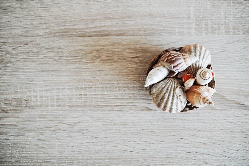 Διακόσμηση θαλασσινών κοχυλιών στοκ φωτογραφία με δικαίωμα ελεύθερης χρήσης