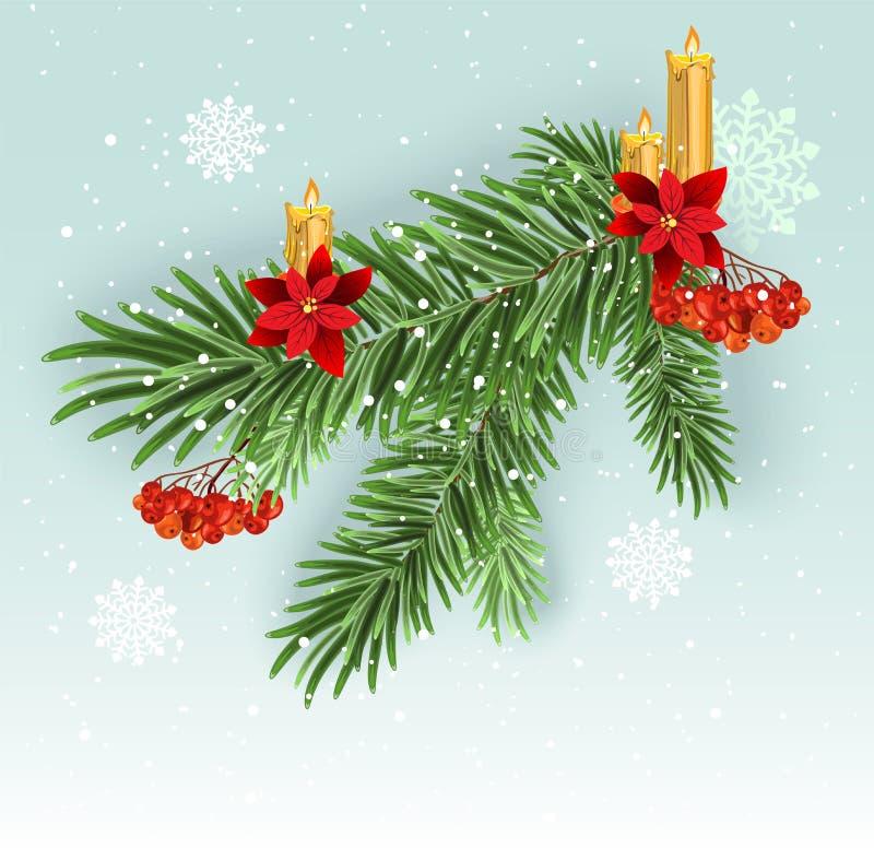Διακόσμηση κλάδων χριστουγεννιάτικων δέντρων Πράσινος πολύβλαστος κομψός κλάδος Κλάδοι του FIR ελεύθερη απεικόνιση δικαιώματος