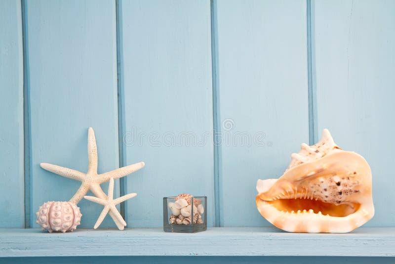 Διακόσμηση με τα οστρακόδερμα, στοκ φωτογραφία με δικαίωμα ελεύθερης χρήσης