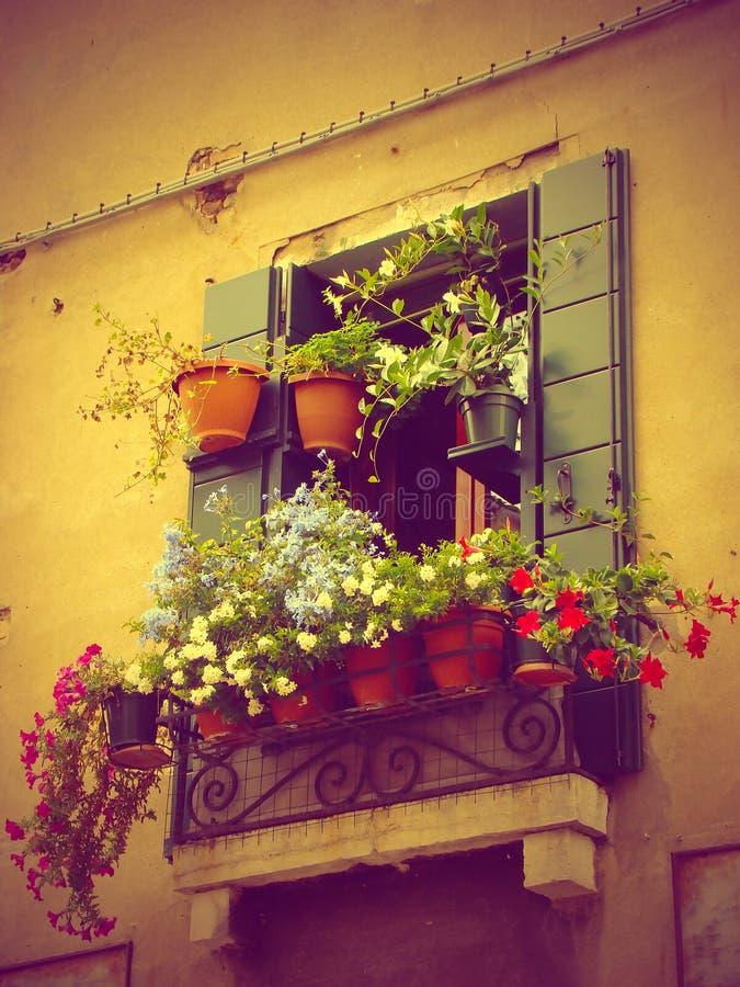 Διακόσμηση λουλουδιών στη Βενετία, Ιταλία στοκ φωτογραφία με δικαίωμα ελεύθερης χρήσης