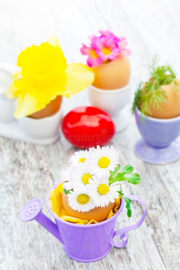Διακόσμηση Πάσχας με τις μαργαρίτες και άλλα λουλούδια στοκ εικόνες