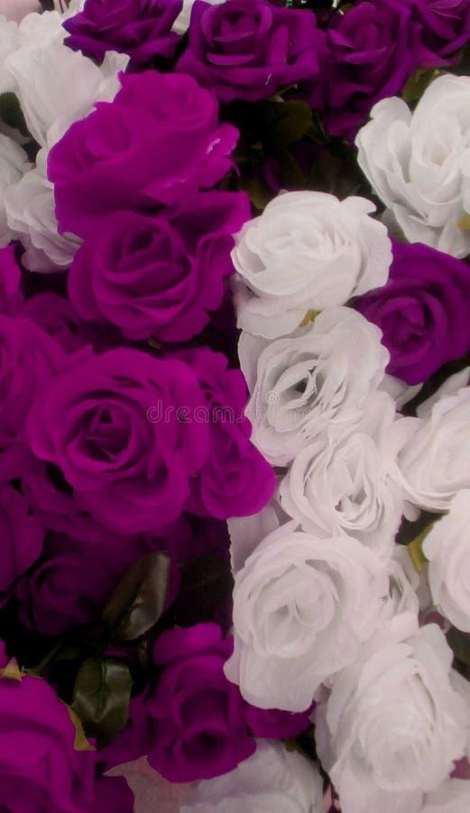 Διακόσμηση τριαντάφυλλων διανυσματική απεικόνιση