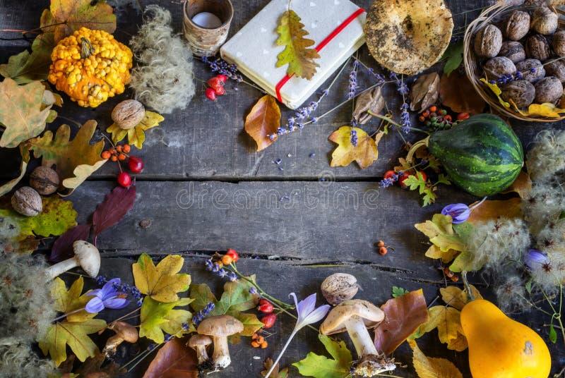Διακόσμηση φθινοπώρου των ζωηρόχρωμων φύλλων, των ξηρών λουλουδιών και των χορταριών στο φυσικό ξύλινο υπόβαθρο στο μαλακό φως τη στοκ εικόνες με δικαίωμα ελεύθερης χρήσης