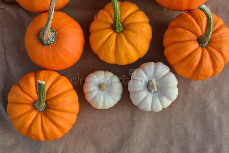 Διακόσμηση pumpkis φθινοπώρου στοκ εικόνες με δικαίωμα ελεύθερης χρήσης