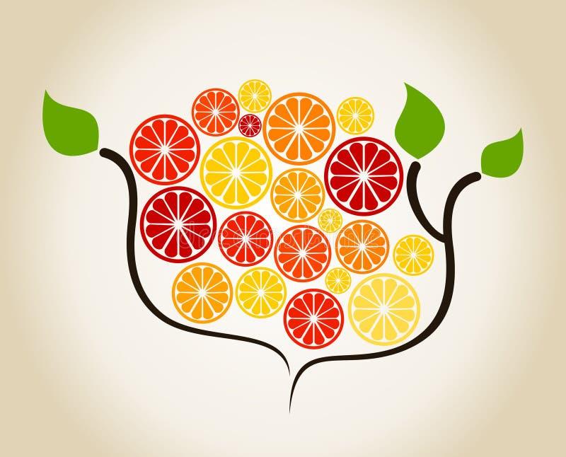 Διακλαδιστείτε ένα πορτοκάλι διανυσματική απεικόνιση