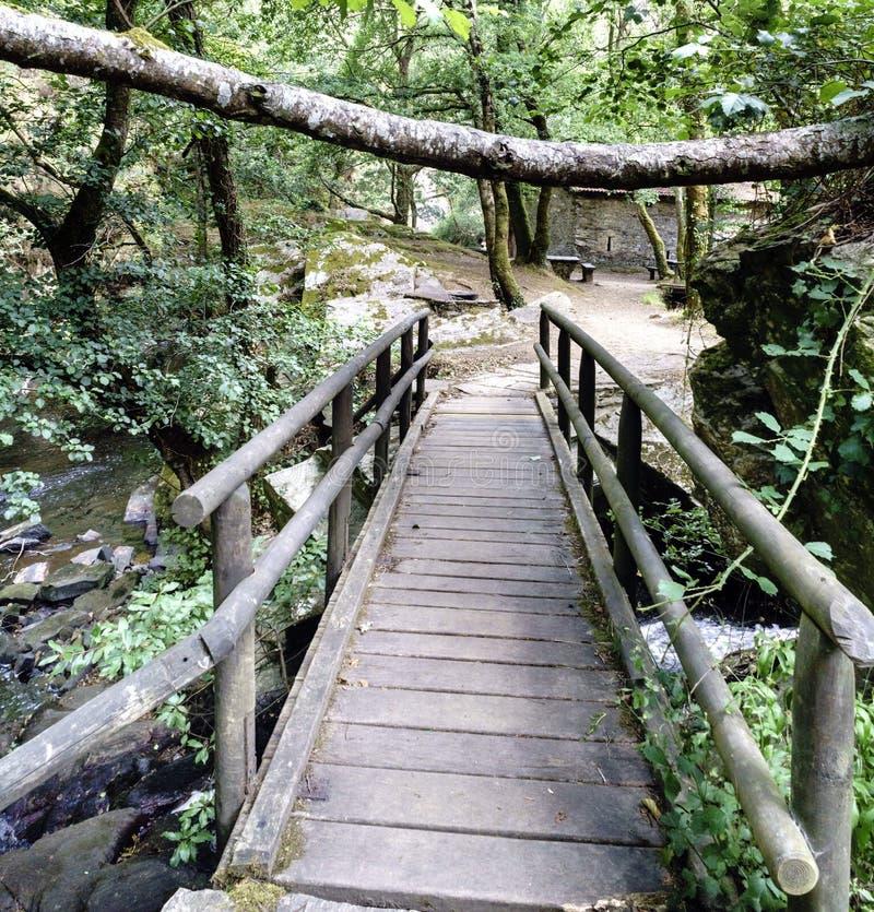 Διαμήκης άποψη μιας στενής για τους πεζούς γέφυρας πετρών με το woode στοκ εικόνα με δικαίωμα ελεύθερης χρήσης