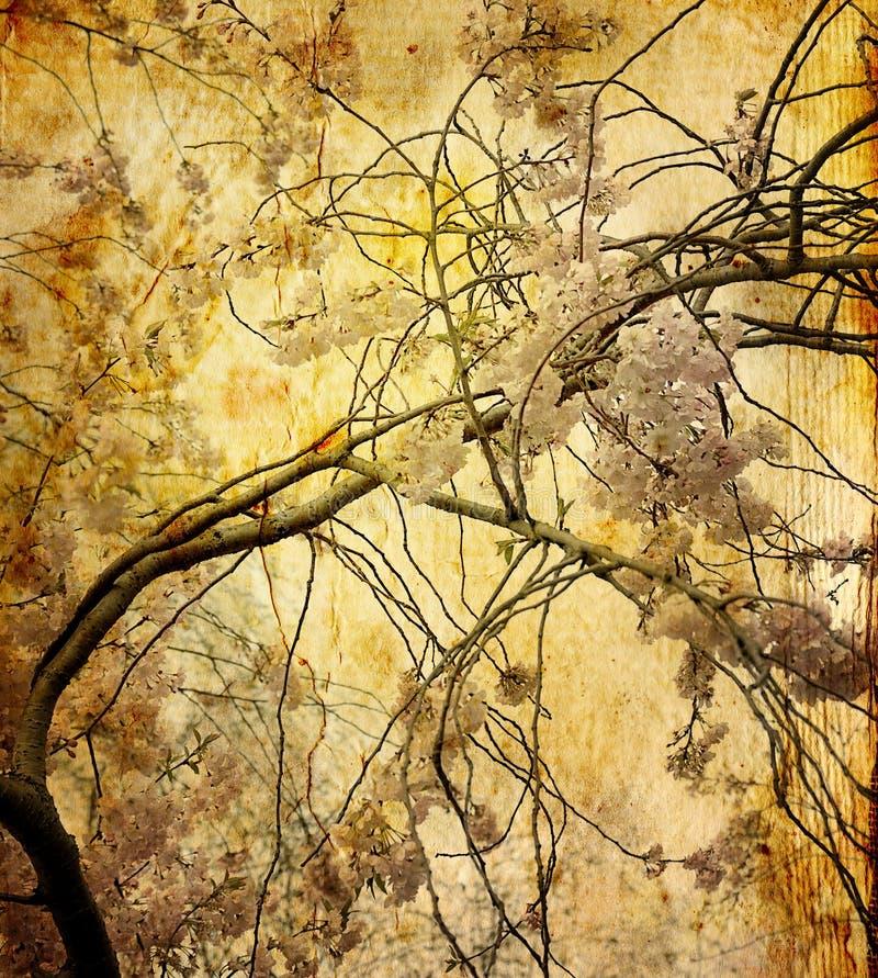 διαμορφωμένο λουλούδι &pi διανυσματική απεικόνιση
