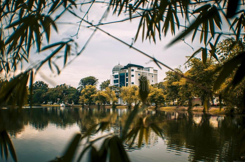 Διαμόρφωση Bulding με τα φύλλα μπαμπού στοκ φωτογραφίες με δικαίωμα ελεύθερης χρήσης