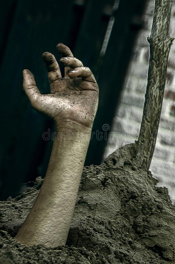 Διανείμετε του εδάφους αποκριές στοκ εικόνες