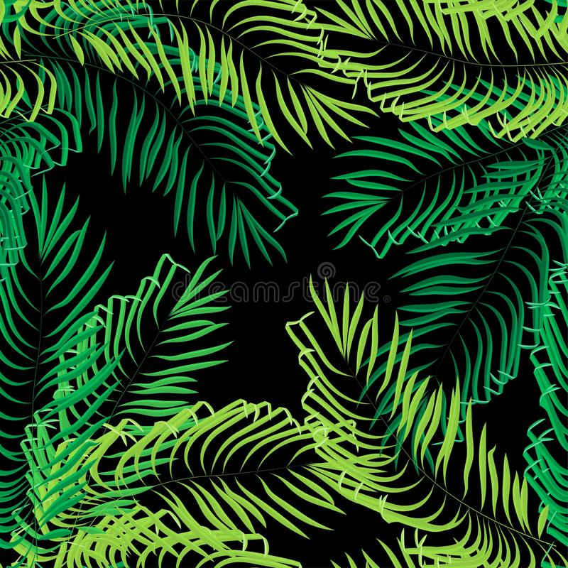 Διανυσματικά άνευ ραφής φύλλα θερινών φοινικών στο μαύρο υπόβαθρο απεικόνιση αποθεμάτων