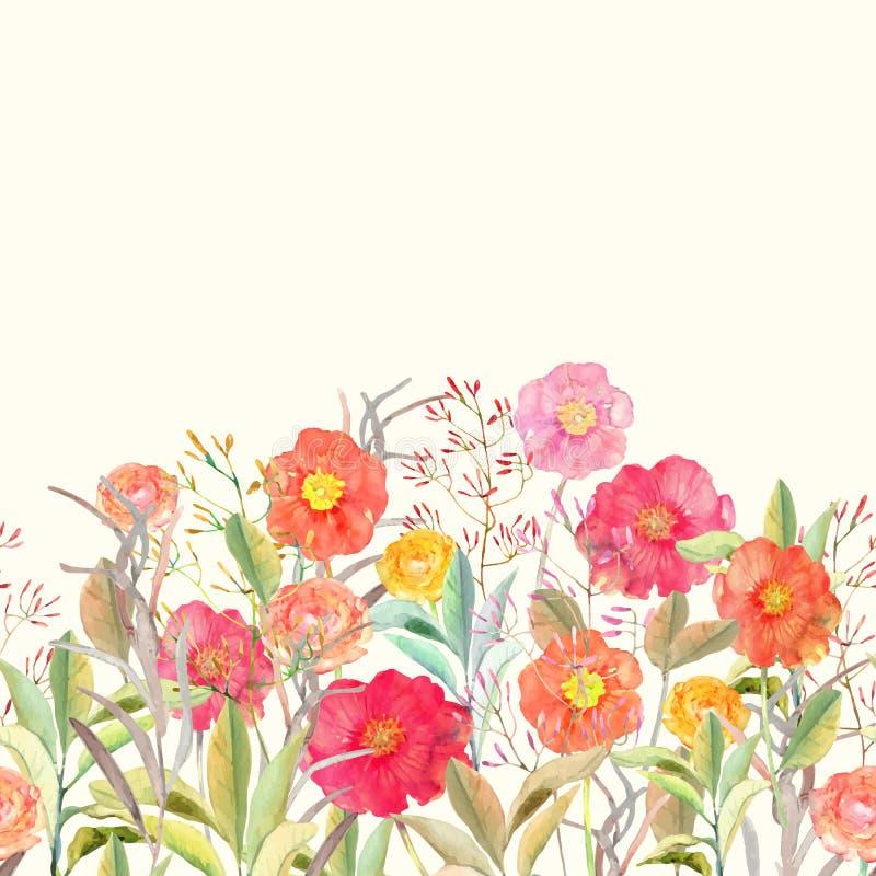 Διανυσματικά άνευ ραφής floral σύνορα τριαντάφυλλα και άγρια λουλούδια δ απεικόνιση αποθεμάτων