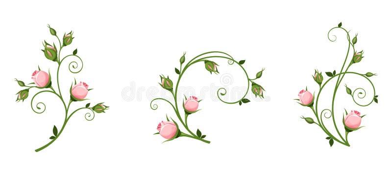 Διανυσματικά διακοσμητικά στοιχεία με τα ρόδινα μπουμπούκια τριαντάφυλλου ελεύθερη απεικόνιση δικαιώματος