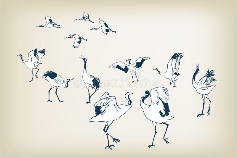 Διανυσματικά ιαπωνικά πουλιά σκίτσων πουλιών γερανών χορού ελεύθερη απεικόνιση δικαιώματος