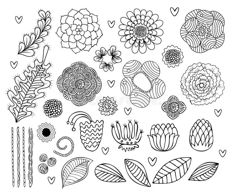 Διανυσματικά καθορισμένα συρμένα χέρι λουλούδια και φύλλα απεικόνιση αποθεμάτων