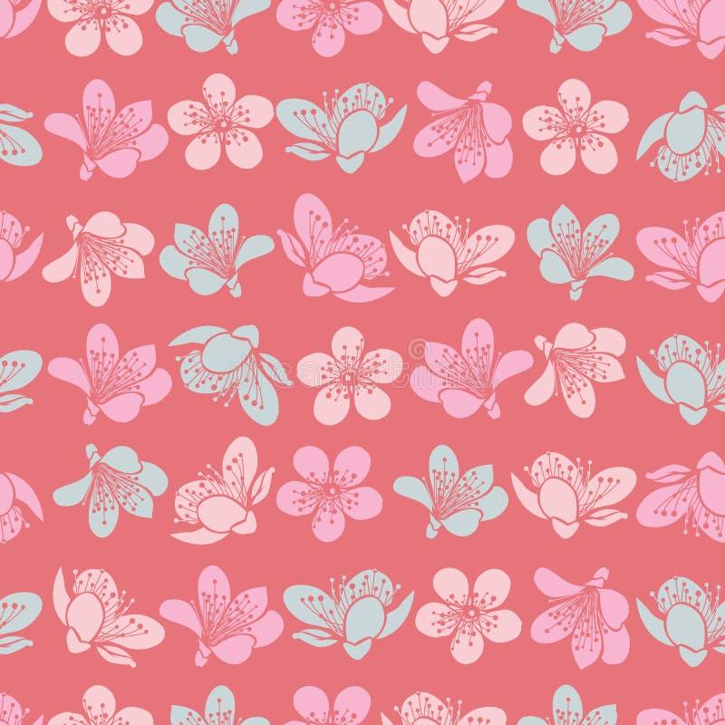 Διανυσματικά λουλούδια sakura ανθών κερασιών κρητιδογραφιών ανοικτό κόκκινο και άνευ ραφής υπόβαθρο σχεδίων διανυσματική απεικόνιση