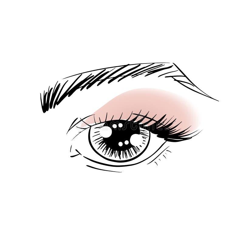 Διανυσματικά μάτια περιλήψεων με τα brows, τα μαστίγια ματιών και τις σκιές ματιών ελεύθερη απεικόνιση δικαιώματος