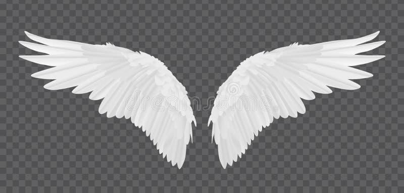 Διανυσματικά ρεαλιστικά φτερά αγγέλου που απομονώνονται στο διαφανές υπόβαθρο διανυσματική απεικόνιση