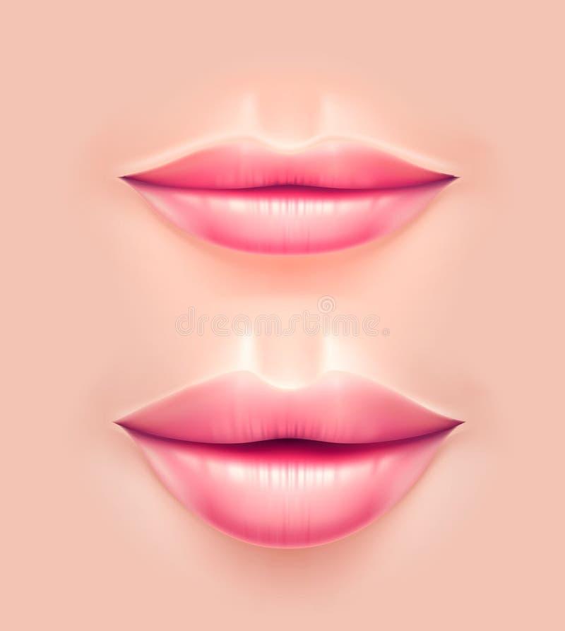 Διανυσματικά ρεαλιστικά χείλια γυναικών μετά από τη πλαστική χειρουργική ελεύθερη απεικόνιση δικαιώματος