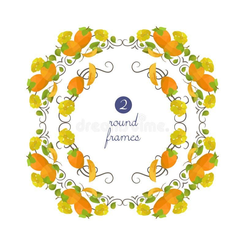 Διανυσματικά στρογγυλά πλαίσια με persimmon και το λουλούδι ελεύθερη απεικόνιση δικαιώματος
