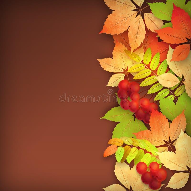 Διανυσματικά φύλλα πτώσης φθινοπώρου απεικόνιση αποθεμάτων