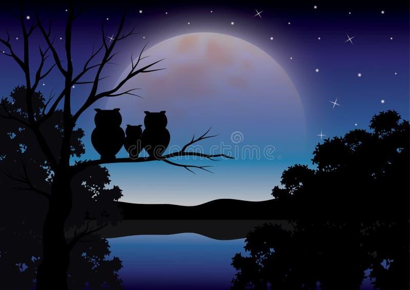 Διανυσματικές απεικονίσεις, οικογένεια κουκουβαγιών που εξετάζουν το σεληνόφωτο στοκ εικόνα με δικαίωμα ελεύθερης χρήσης