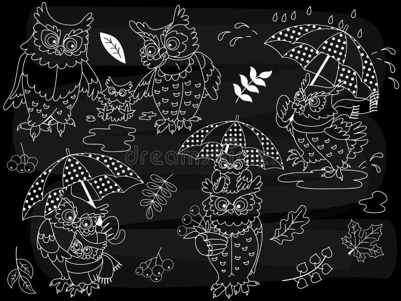 Διανυσματικές κουκουβάγιες πινάκων κιμωλίας καθορισμένες ελεύθερη απεικόνιση δικαιώματος
