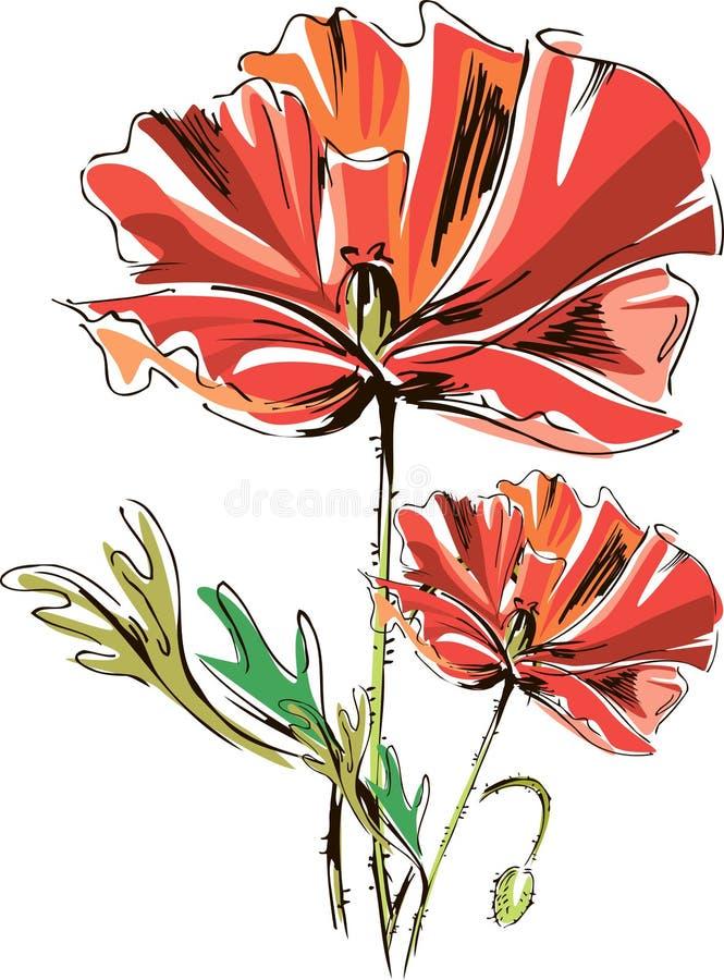 Διανυσματικές κόκκινες παπαρούνες με τους μίσχους που απομονώνονται σε ένα άσπρο υπόβαθρο απεικόνιση αποθεμάτων
