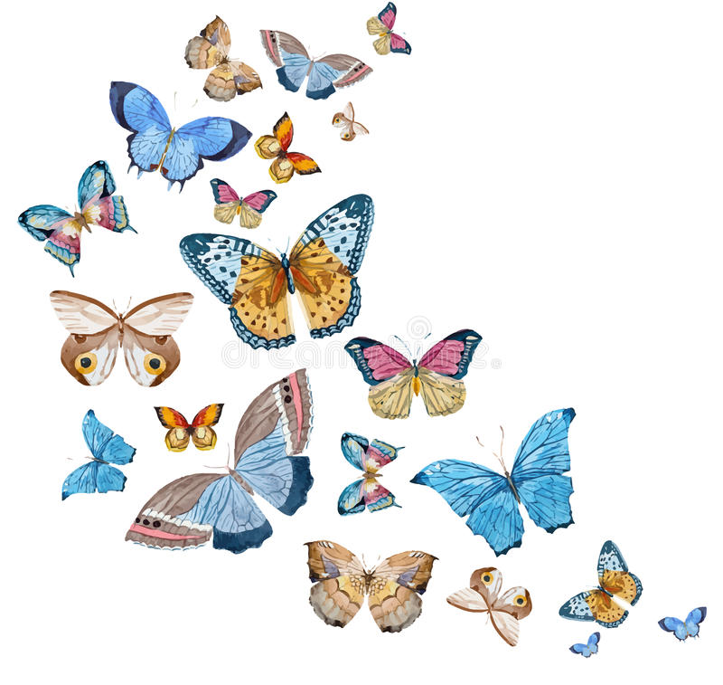 Διανυσματικές πεταλούδες Watercolor απεικόνιση αποθεμάτων