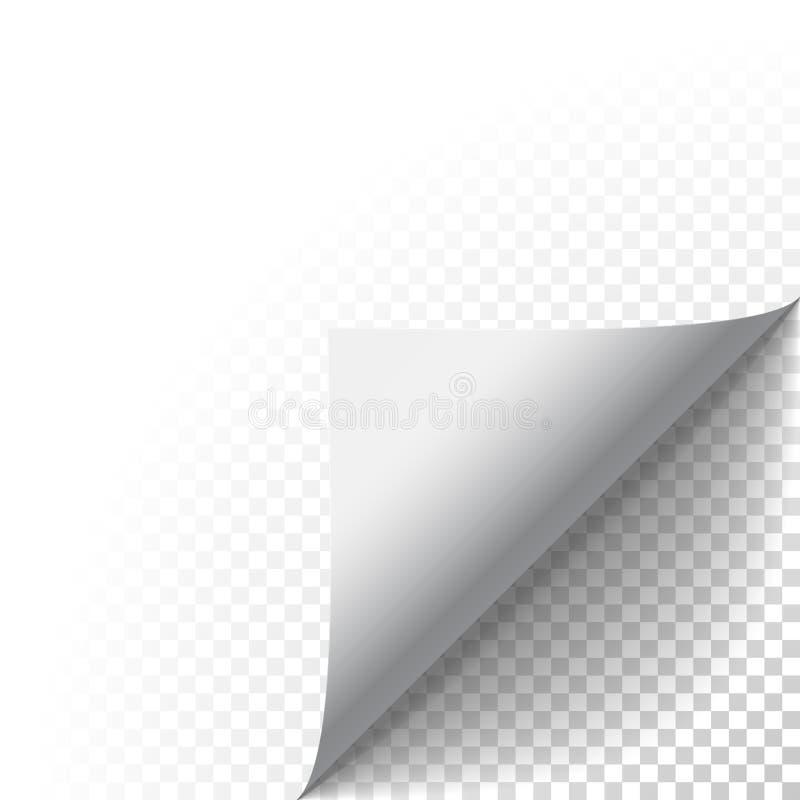 Διανυσματικές πιό άρρωστες κατσαρωμένες φλούδα πτυχές εγγράφου με τη σκιά διανυσματική απεικόνιση