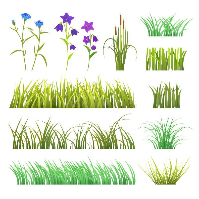 Διανυσματικές πράσινες χορτάρι χλόης και φύση λουλουδιών που απομονώνονται στην άσπρη υποβάθρου σχεδίου απεικόνιση στοιχείων προτ απεικόνιση αποθεμάτων