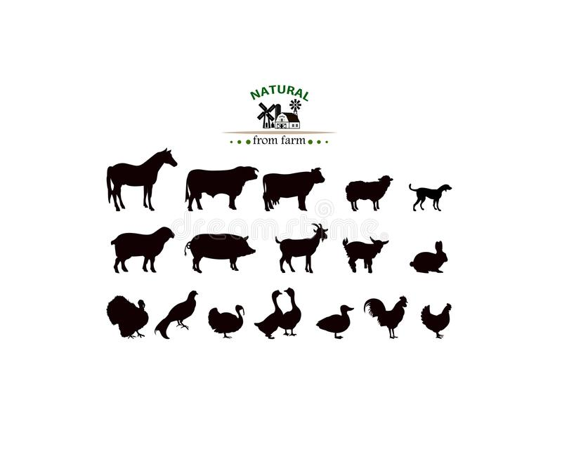 Διανυσματικές σκιαγραφίες ζώων αγροκτημάτων που απομονώνονται στο λευκό απεικόνιση αποθεμάτων