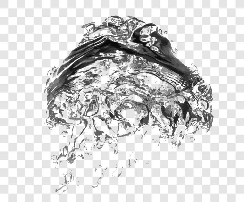 Διανυσματικές φυσαλίδες νερού σαπουνιών στοκ εικόνα