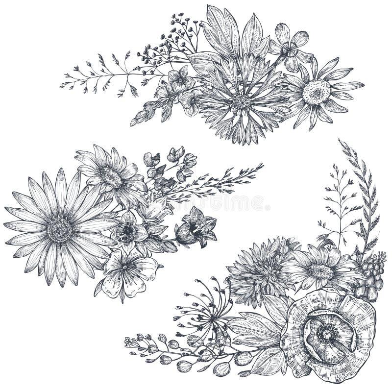 Διανυσματικές floral ανθοδέσμες με τα χορτάρια και τα wildflowers απεικόνιση αποθεμάτων