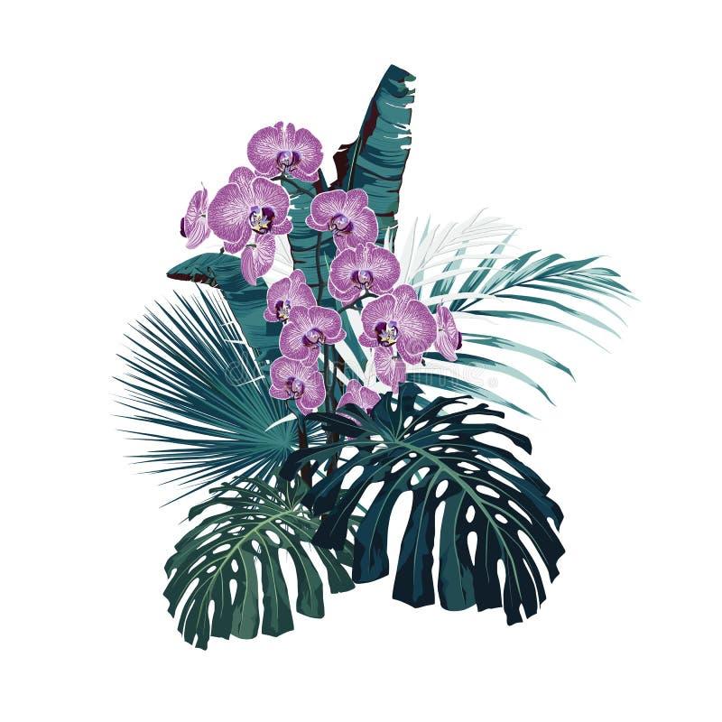 Διανυσματική ανθοδέσμη με τα τροπικά λουλούδια Αναδρομική της Χαβάης floral ρύθμιση ύφους, με τα όμορφα λουλούδια ορχιδεών ελεύθερη απεικόνιση δικαιώματος