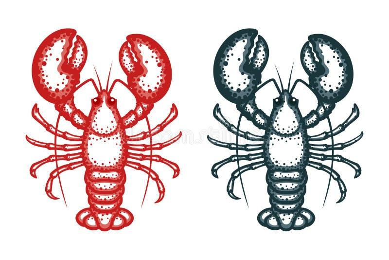 Διανυσματική απεικόνιση αστακών Αστακοί σε ένα άσπρο υπόβαθρο Διανυσματική απεικόνιση θαλασσινών διανυσματική απεικόνιση